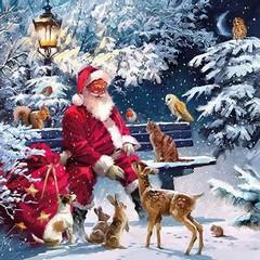 Салфетки Santa On Bench