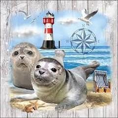 Салфетки Ambiente Seal Couple